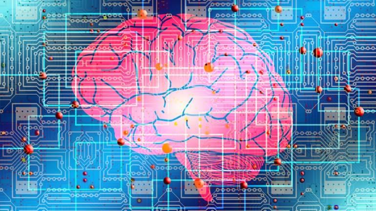 Arriva Bert, il nuovo algoritmo di Google che imita il funzionamento dei nostri neuroni